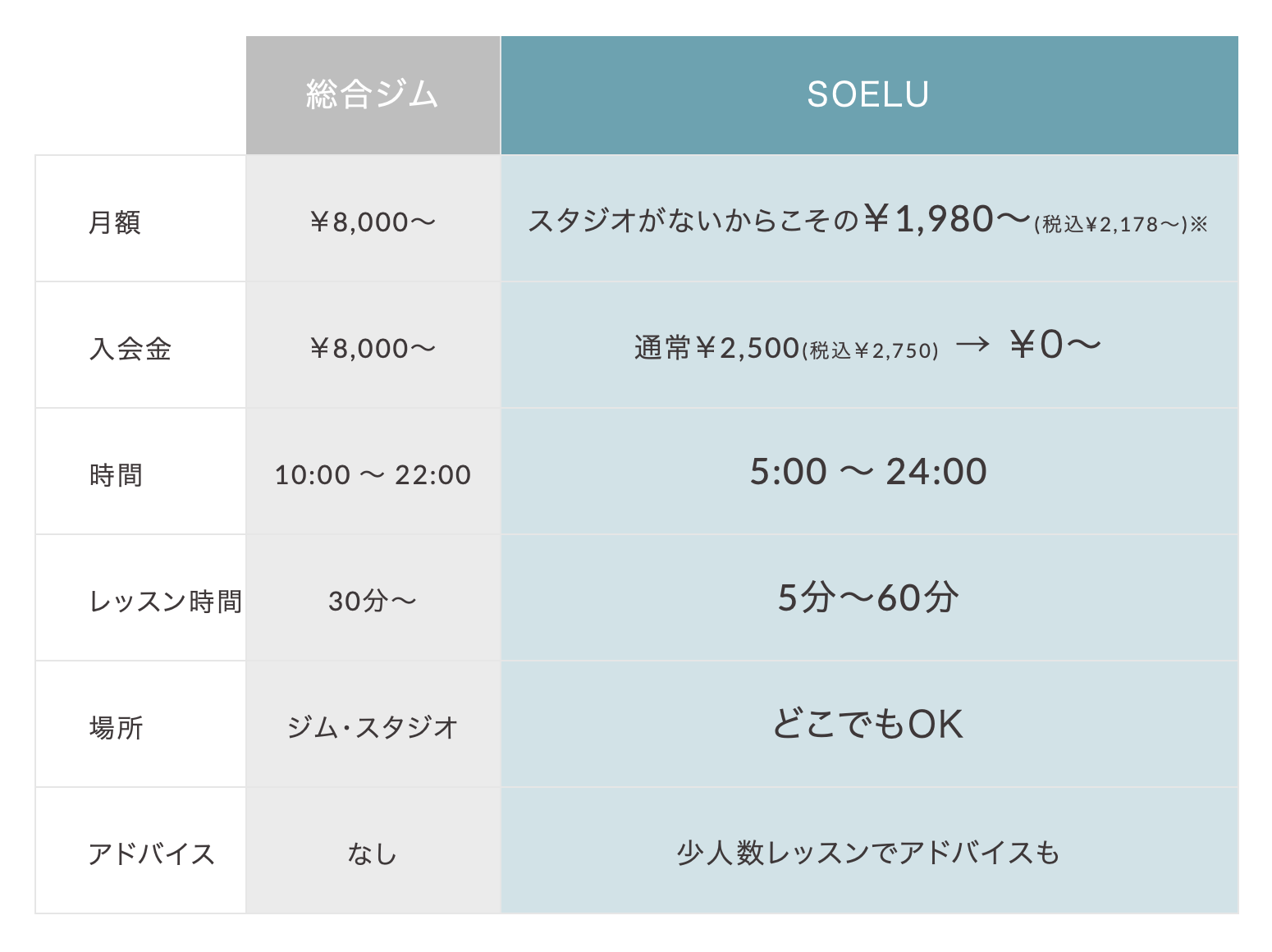 SOELU(ソエル)の料金プラン