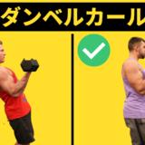 ダンベルカールの効果的なやり方や重量・座って動作する違いを徹底解説