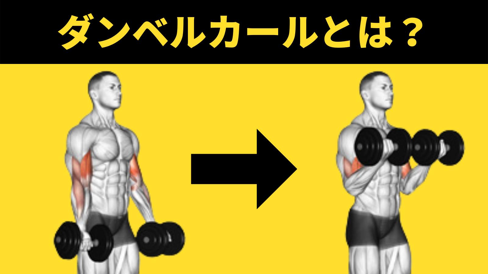 ダンベルカールとは?鍛えられる筋肉